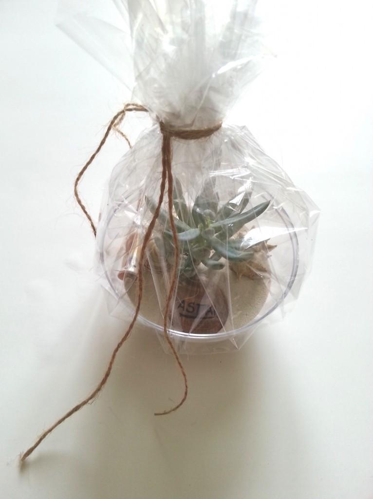dovana sveciams